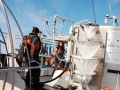 Sampling in the Sargasso Sea